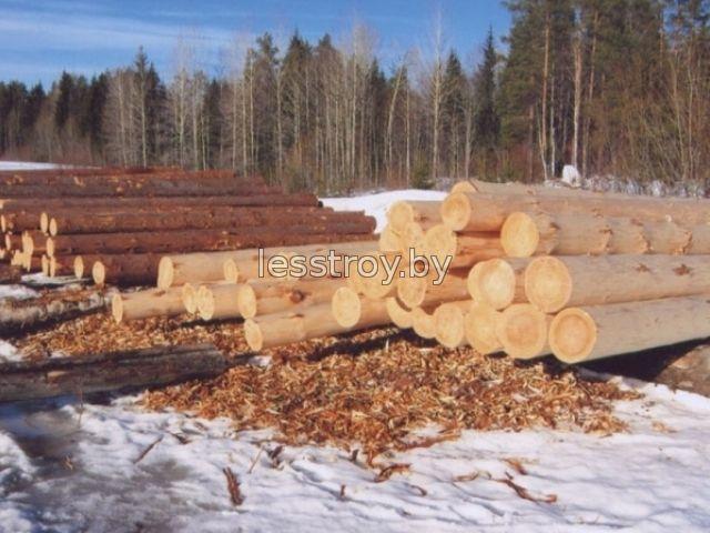 Зимний лес для строительства дома